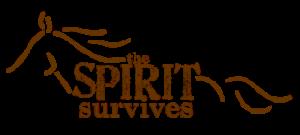 spirit survives